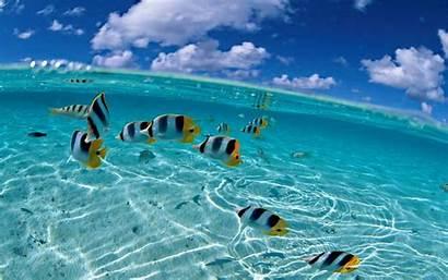 Ocean Cool Inside Backgrounds Wallpapers Water Wallpapersafari
