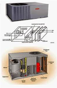 Air Conditioner Fan Motor Wiring Diagram : frs26zgew2 wiring diagram zgew ~ A.2002-acura-tl-radio.info Haus und Dekorationen