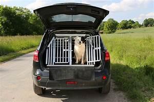 Cage Transport Chien Voiture : transport des chiens en voiture r gles pr cautions ooreka ~ Medecine-chirurgie-esthetiques.com Avis de Voitures
