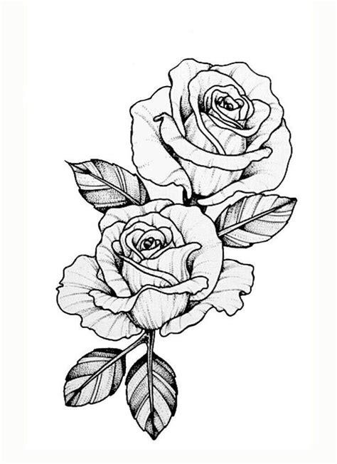 49 best Money rose images on Pinterest | Tattoo ideas