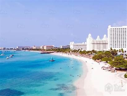 Palm Aruba Bums Alquiler Iha Caribbean Vacanze