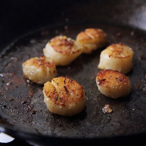 cuisiner des noix de st jacques recette noix de jacques juste poelées