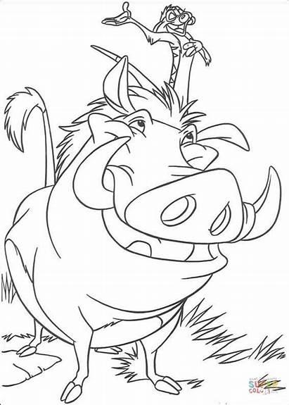 Timon Pumbaa Colorare Coloring Disegni Lion King