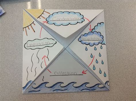 cool way to teach about the spine make the water cycle foldable graphic organizer 2nd grade for the classroom science pinterest