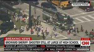 It Begins: CNN Analyst Demands 'Discussion About Guns ...
