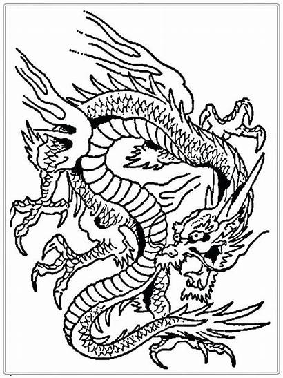 Coloring Dragon Pages Complex Adults Printable Getcolorings