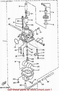 Yamaha Timberwolf 250 Carburetor Diagram