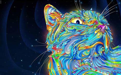 Amazing Graffiti Cat 1440x900 Wallpapers, 1440x900
