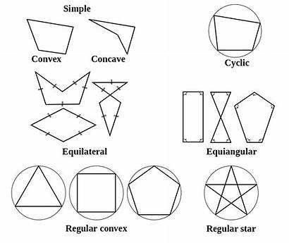 Polygon Types Polygons Names Shape Concave Worksheet