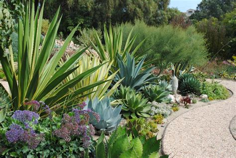 agave garden garden designers roundtable danger is my middle name harmony in the garden