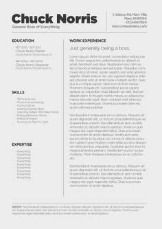 Resume Format Ideas by 80 Best Resume Ideas Images Resume Ideas Cv Template