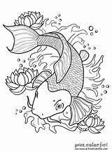 Koi Fish Pond Drawing Outline Coloring Pages Japanese Print Tattoo Drawings Line Colors Printcolorfun Getdrawings sketch template