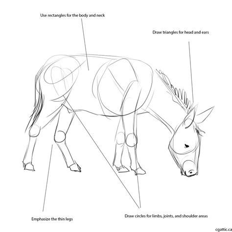 realistic donkey drawing   steps  photoshop