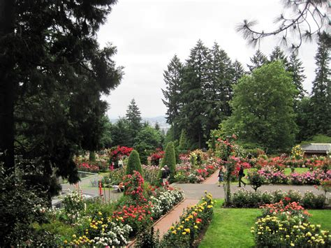 international test garden park in portland