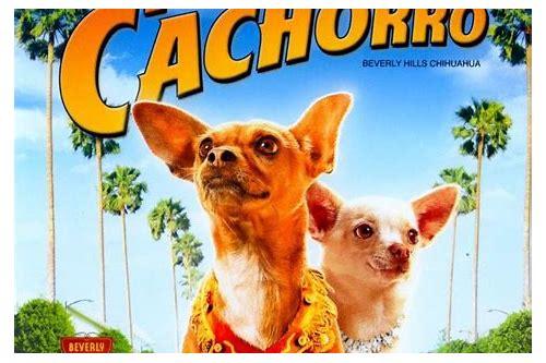 baixar filme beverly hills chihuahua 2 movie free