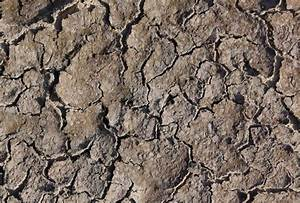 Ground Free Textures