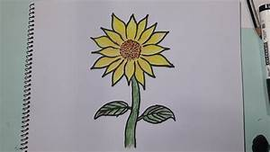 How to Draw a Sunflower Easy Step by Step - Sunflower ...