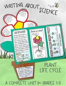 Life Cycle Of Plants Unit  Investigations  U0026 Plant Life