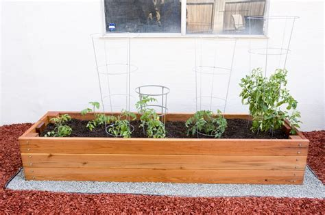 ft  ft california redwood planter box  tomatoes