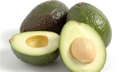 temperatures for growing avocado trees ehow uk