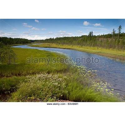Kuhmo Stock Photos & Images - Alamy