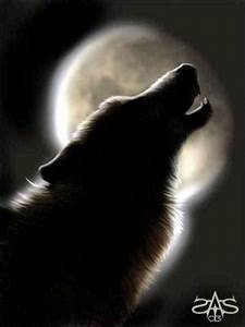 Symbole Du Loup : le symbole du loup le monde de sytrya ~ Melissatoandfro.com Idées de Décoration