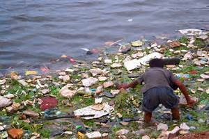 essay about causes and effects of water pollution a psychology causes and effects of water pollution essay cause and effect