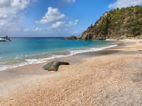 St. Barts Shell Beach