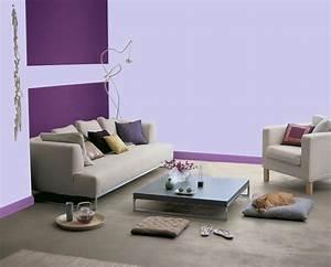 associer couleur meuble gris peinture parme et couleur With conseil pour peindre un mur 8 deco astuces et conseils pour refaire votre salle de sejour