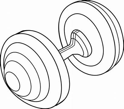 Barbell Clip Clipart Weight Line Drawing Lineart