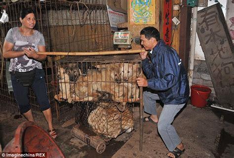 The Cruellest Festival In The World China Advances Its