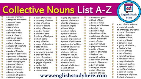 Collective Nouns List A-z