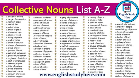 Collective Nouns List A-Z - English Study Here
