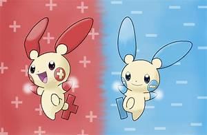 Pokemon Minun Evolve Images | Pokemon Images