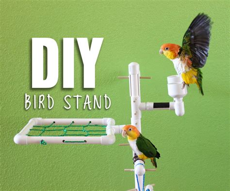 diy bird stand 8 steps with pictures