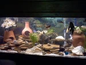 aquarium decorations 75 gallon 45 gallon acrylic refugium 2017 fish tank maintenance