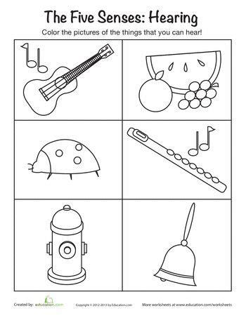 sense of hearing mfw k us five senses senses 119 | 56eb215a7731951d9f75337d7e6ab783 senses preschool preschool music