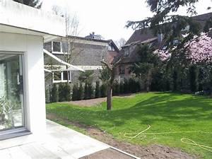 Schnell Wachsende Laubbäume Für Den Garten : moderne laubb ume f r den garten gesucht fragen ~ Michelbontemps.com Haus und Dekorationen