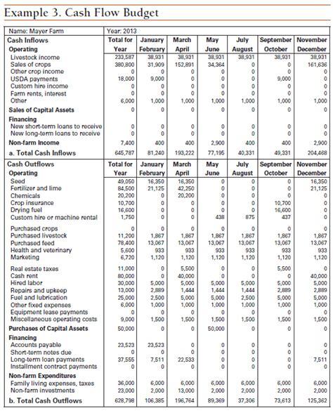 contoh cash flow business plan dewolpeper