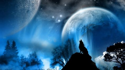 wolf background wallpaper 12532