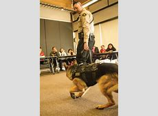 The Southern Ute Drum BGC meets furry friend