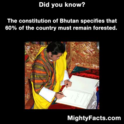 does the constitution of bhutan state that 60 of bhutan must be forested skeptics