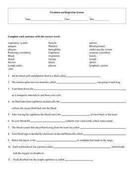 All Worksheets » Reinforcement & Vocabulary Review Worksheets Answers  Printable Worksheets