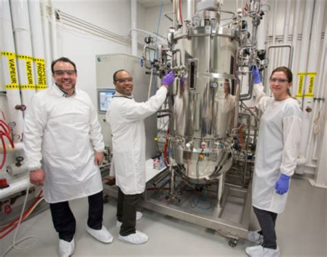 cell culture pilot plant national research council canada