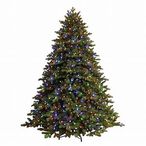 Ge, 7, 5, Ft, Just, Cut, Ez, Light, Norway, Spruce, Artificial, Christmas, Tree, With, C3, Dual, Color, Lights