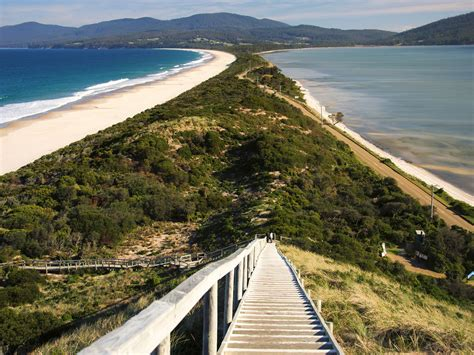 Bruny Island Neck Attraction Tour Simpsons Bay