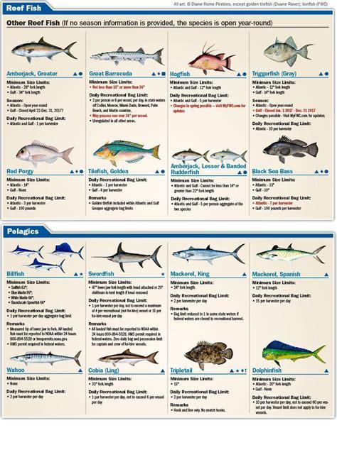 saltwater florida fishing regulations limits species salt water eregulations guide boats sea bass recreational