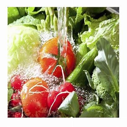 Washing Vegetables Fruits