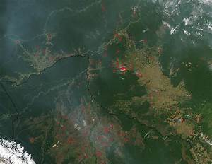 NASA Deforestation (page 3) - Pics about space