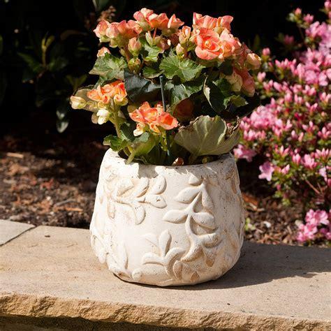 pair  rustic flower pots  jodie byrne